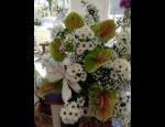 Květinářské služby Zahradnictví a květinářství Bellis v Prostějově