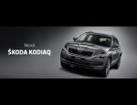 Prodej vozů značky ŠKODA