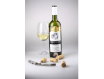 Bílá vína odrůdová, moravská zemská vína, přívlastková vína, exkluzivní kolekce vín