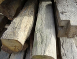 Výkup odpadního dřeva