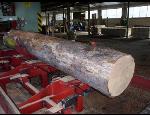Palivové dřevo z pily MOSAIC Bělotín, dřevěné lisované brikety bez přísad