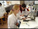 Bakalářské studium akreditované s UTB
