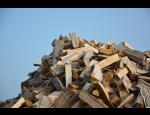 Výkup a těžba dřeva, výroba palivového dříví a rozvoz dřeva do domu