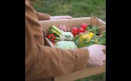 Paletka na potraviny - Model Pack Shop Praha