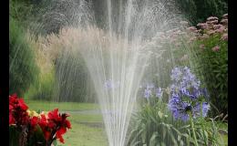 Získejte s dotačním programem Dešťovka až 55 000 Kč na zalévání zahrady