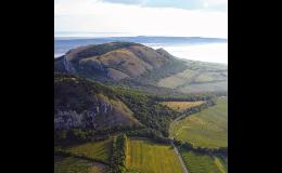 Návštěva Pálavských vrchů, degustace moravských vín