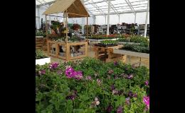 Výběr jarních trvalek v zahradnictví Břeclav