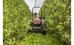 Údržba zeleně ve vinohradech se zahradní technikou Kubota