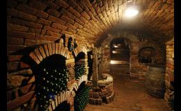 Řízená degustace vín ve vinném sklípku ve Valticích