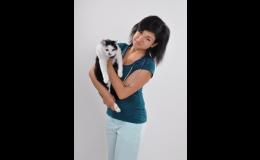 Veterinární vyšetření a pravidelné očkování koček