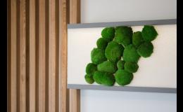 Designové interiérové prvky ze dřeva