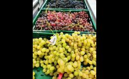 Prodej sezónního ovoce v Zelené zahradě Znojmo