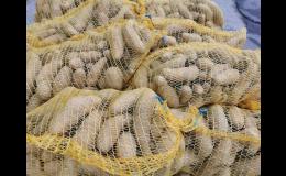 Zdravé a chutné brambory v prodejně Zelená zahrada Znojmo