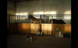 Koňský box s čelní stěnou Economy