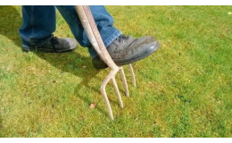 Úpravy terénu, zahradní práce, práce se dřevem