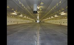 Lité asfaltové podlahy v halách pro odchov drůbeže