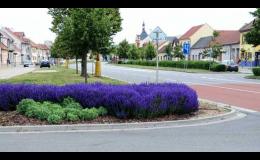 Realizace městských parků a uliční zeleně
