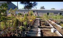 Zahradnictví RAIDA-GARDENCENTRUM v Opavě