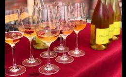 Degustace ve vinném sklípku, občerstvení i ubytování v Čejkovicích