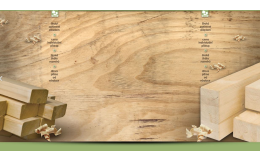 Palivové dřevo, které je levným a ekologickým topivem, dodává společnost Wood Rakušan