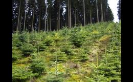Půdní kondicionery TerraCottem pro rostliny v zemědělství, lesnictví a zahradnictví