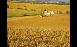 Zemědělské obilniny - pšenice, ječmen, oves, kukuřice, šrot