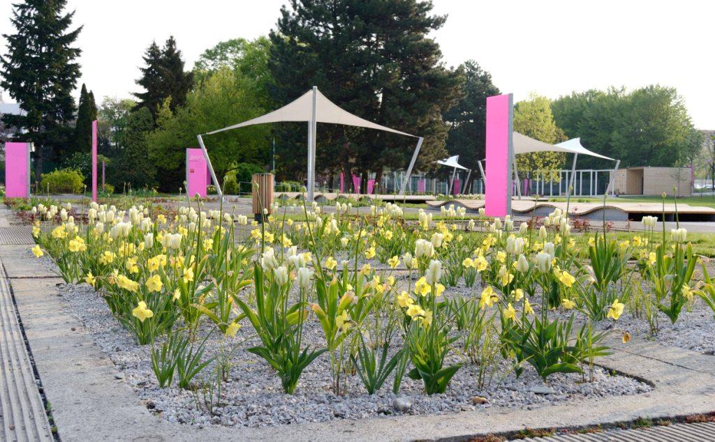 Rozárium Olomouc - druhá největší růžová zahrada v České republice