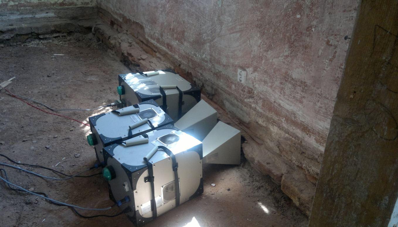 Mikrovlnná sanace – zlikvidujte škůdce ve svém domě jednou provždy