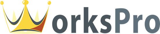 Společnost WorksPro s.r.o. představuje své projekty na poli českého internetu