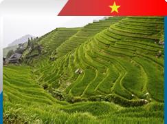 Zajišťujeme víza do Vietnamu