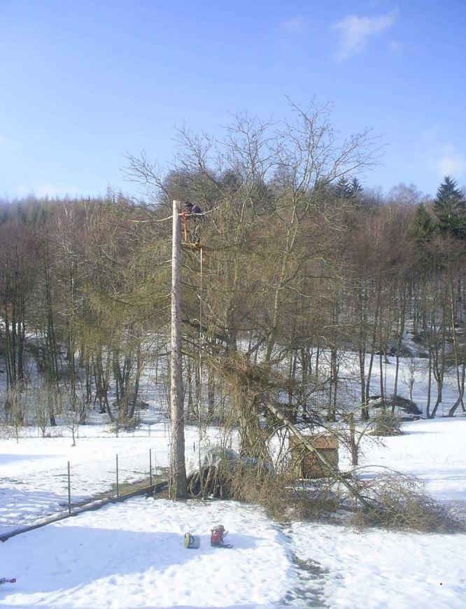Manipulace se stromy
