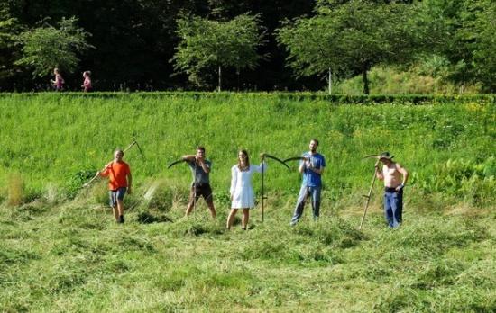 Zábavná a poučná škola hrou, ekologická výchova