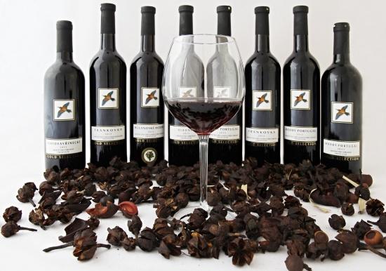 Vína z Pálavy z módy nikdy nevyjdou