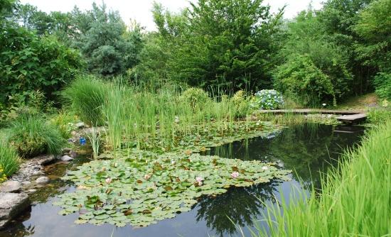 Chcete zahradu, kterou v�m budou v�ichni z�vid�t? Vyu�ijte realizace zahrad na m�ru