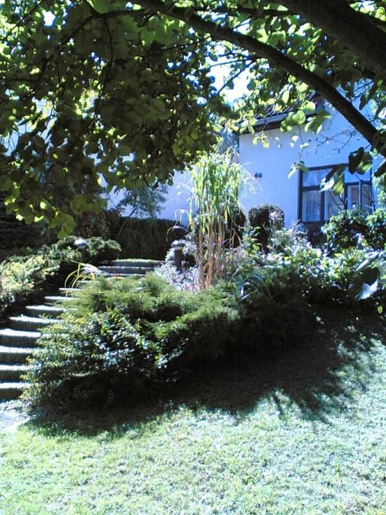 Král - zahradnické práce s.r.o., Praha: zahradnické práce