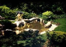 Postaráme se o veškeré zahradnické práce a zajistíme i celoroční údržbu zeleně