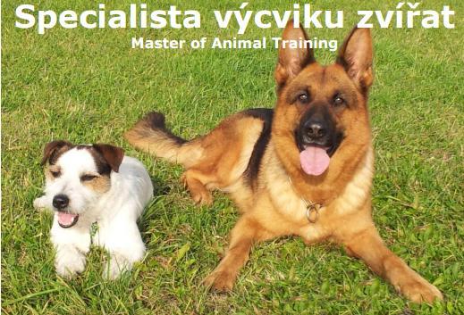 Ostraha i profesní vzdělávání v oblasti výcviku zvířat pod taktovkou jedné společnosti
