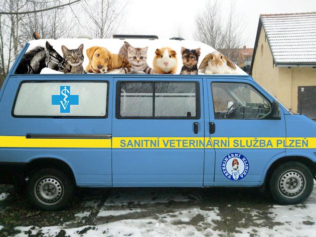 Sanitka pro zvířata denně zachraňuje v Plzni a okolí vaše domácí mazlíčky