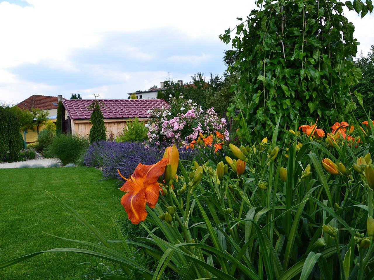 Návrh, realizace a údržba zahrad i zeleně