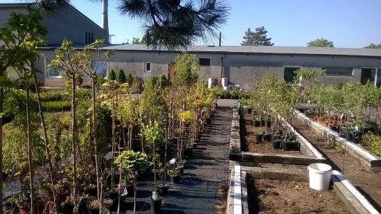 Vše pro zahradu přináší zahradní centrum GARDEN CENTRUM RAIDA Opava