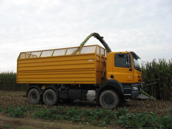 silážní korba 30m3 na podvozku Tatra Phoenix 6x6 při práci