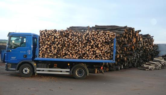 Suché palivové dřevo vám ušetří náklady za vytápění