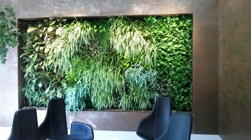 Nechte si vytvořit vertikální zahradu přesně podle vašich představ.