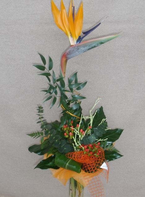 Květinářství Kamélie poskytuje rozvoz květin
