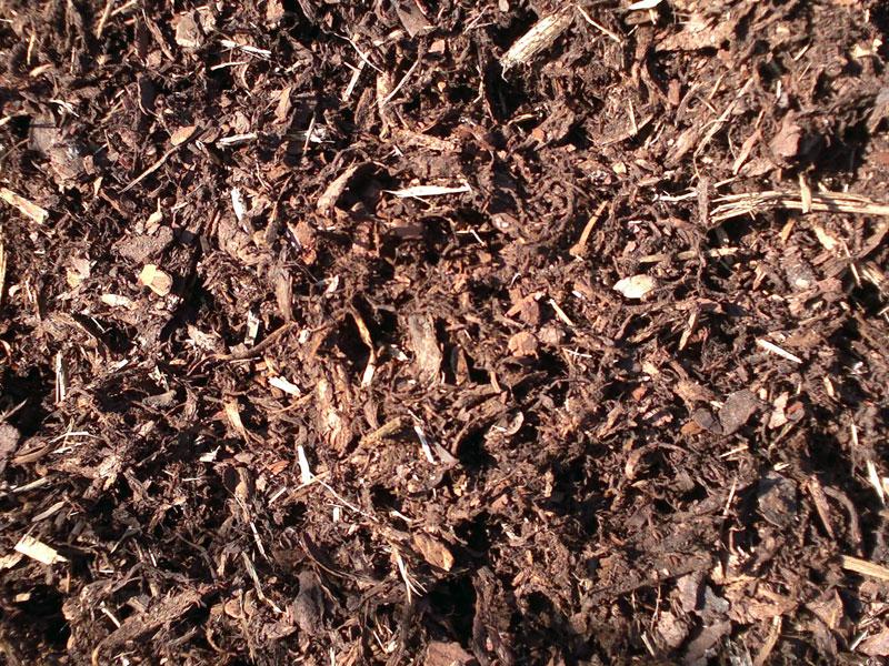 Kvalitní palivové dřevo i uhlí