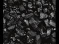 Firma Olvan se v poslední době zaměřuje na prodej uhlí, kromě toho ještě prodává paliva, maziva, autodíly nebo pracovní pomůcky