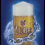 Vyhlášená česká piva za velkoobchodní ceny