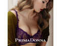 BRA-FITTING - poprv� v Olomouci. Co je to?