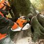 Kupovat kvalitní zahradní a lesní techniku se vyplatí