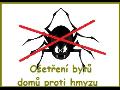 Dezinsekce zajistí dlouhodobou ochranu před hmyzem
